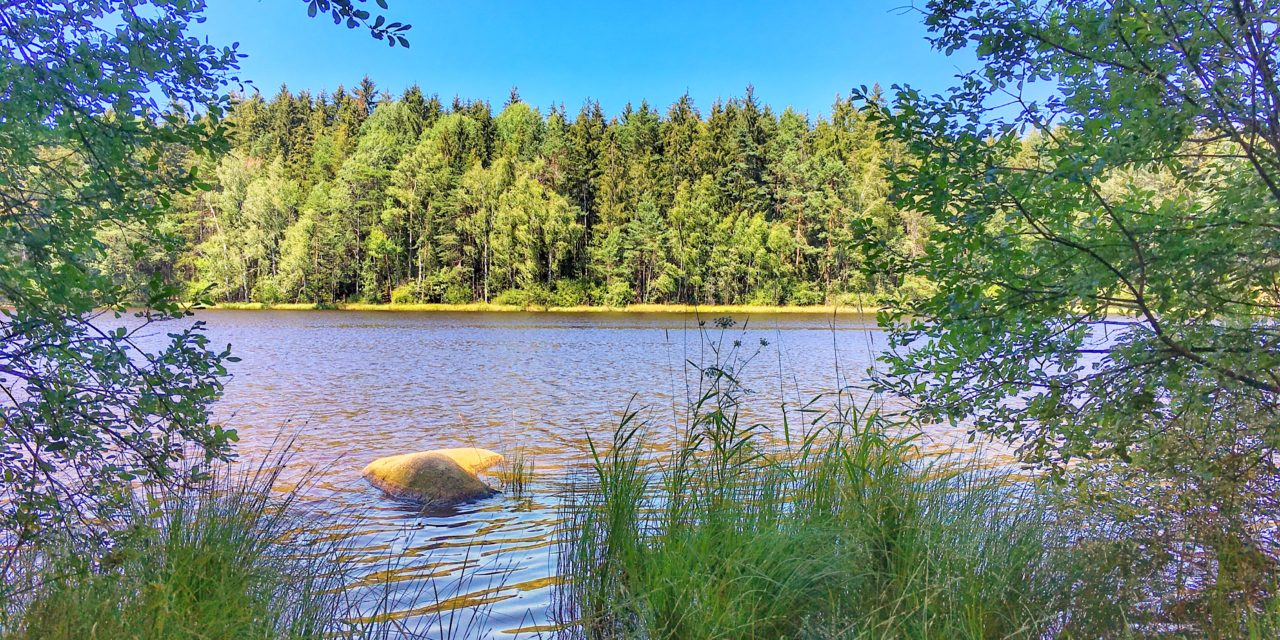 Gebharecký rybník