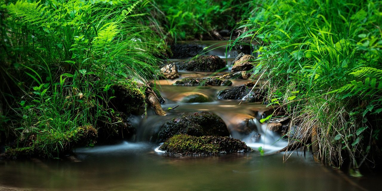 Slavonický potok
