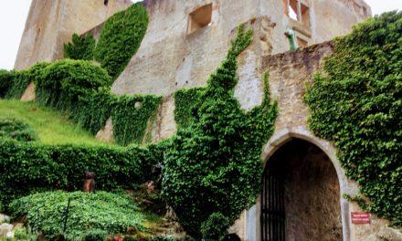 Výstava fotografií na hradě