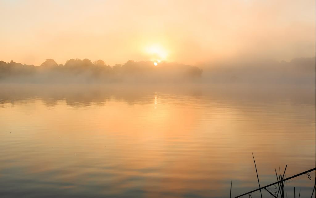 Výlov rybníka Světlov